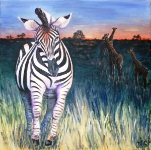 Løbende zebra