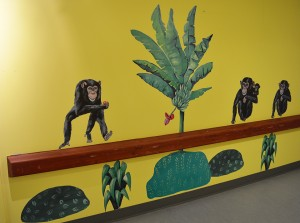 LisW.chimpanser.hillerød hospital.nedsat