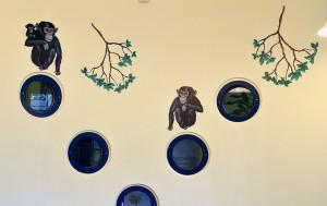 LisWchimpanser.hillerødhospital.n