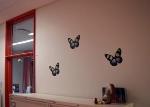 LisW.HerlevBørneambulatorium.sommerfugle ns