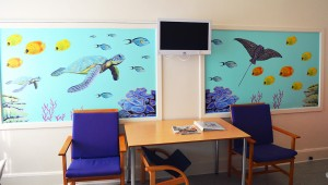 LisW.aalborghospital.stue 3 hav